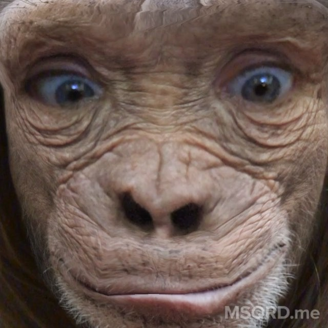 Cara Delevingne is a monkey on #MSQRD