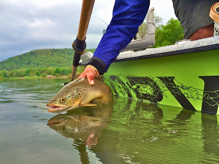 My Exciting Fishing Experiences - What I Learn