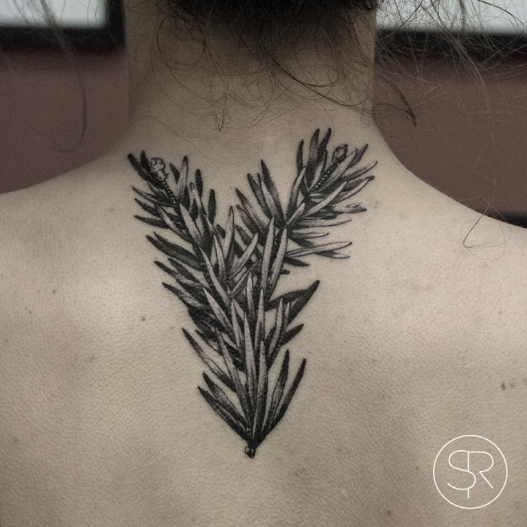 My newest tattoo (seqoia sempervirens branch)