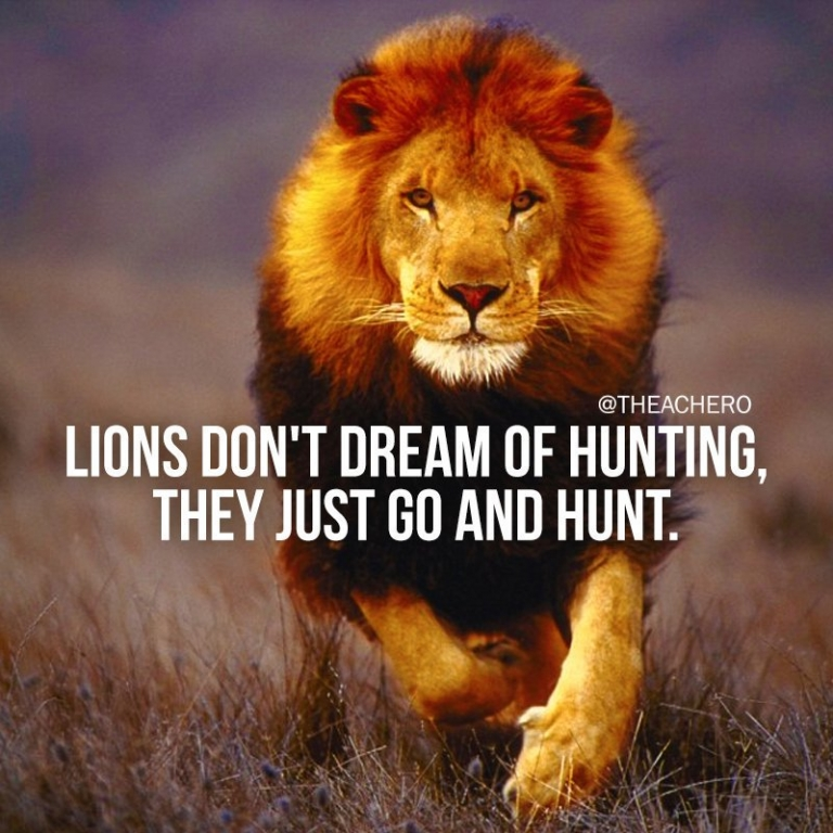#TuesdayMotivation: Lions don't dream of hunting, they just go and hunt...