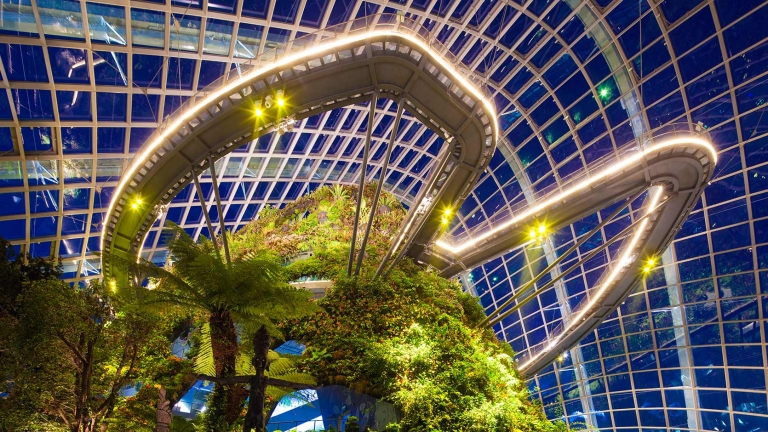 Cloud Forrest, Gardens by the Bay 2