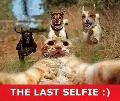 But first...