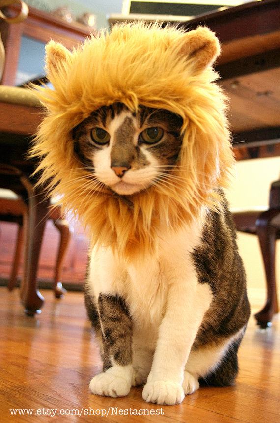 Lion Hat for Cats by Nestasnest on Etsy | OMG #ThisIsCute .. I'm so buying this!