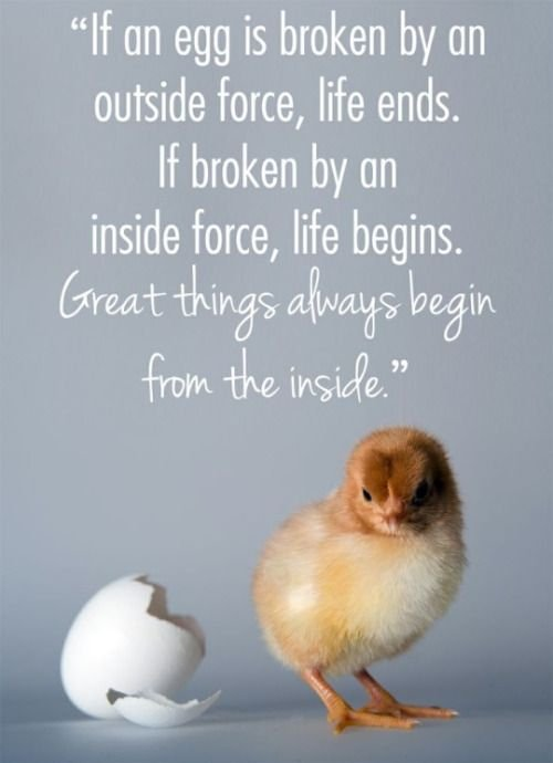 Great Things Always Begin From The Inside. 🙏 #SundayMotivation