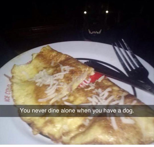 You never dine alone when you have a #dog...