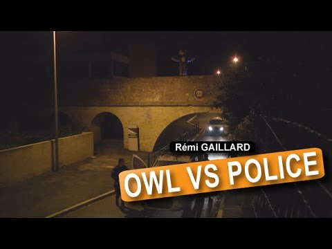 Owl vs Police #Prank... All For Youtube Views, Guy Don't Care Even If He Goes To Jail