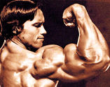 Secrets and Workouts to Get Bigger Arms | A Listly List