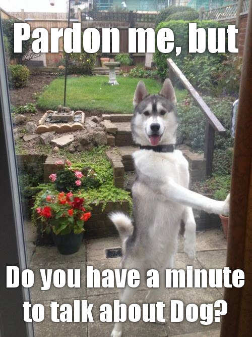 Jehovah's Dog...