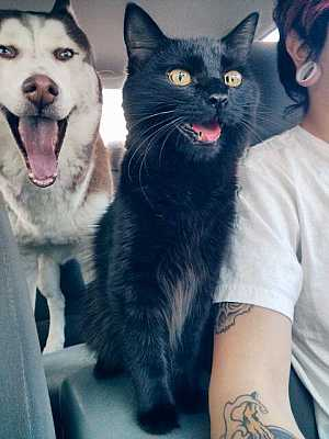 They're both in awe ... #aww