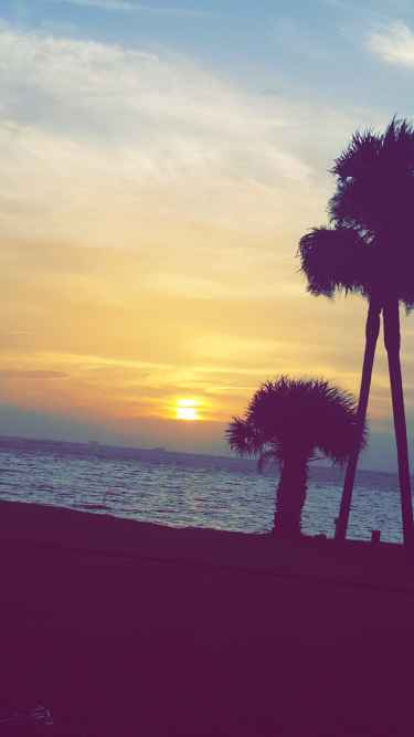 Follow me on Snapchat. dmann0889 #Florida #Summer #Beautiful