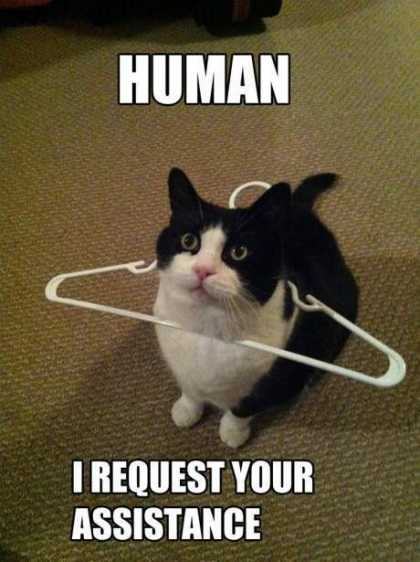 No. It's not a hanger.