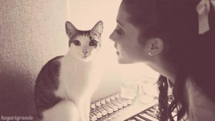 Shy cat doesn't want a kiss from a cute girl   #cats #aww