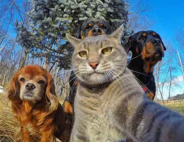 Selfie with the crew...