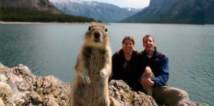 #Funny Squirrel #Photobomb