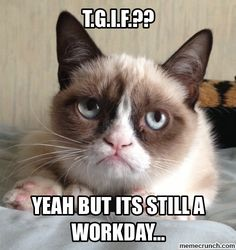 Grumpy cat is right #TGIF