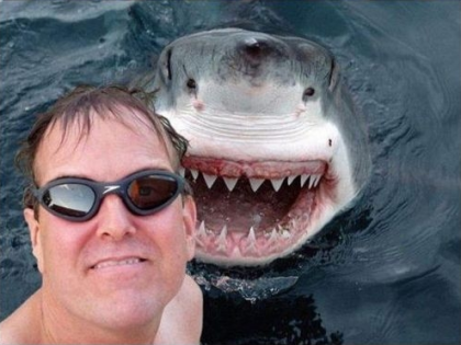 #Shark Photobomb