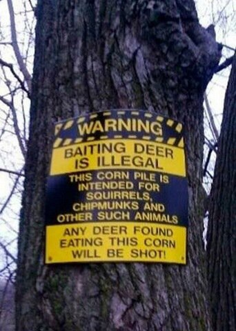 WARNING: Baiting deer is illegal!