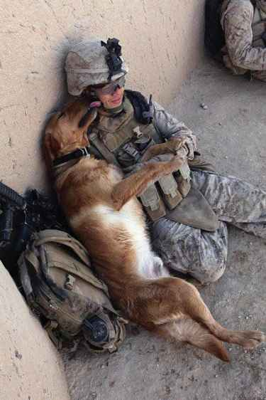 I don't care if we are in combat or home... #aww