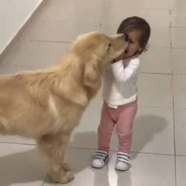 Big Puppy Kisses ❤️